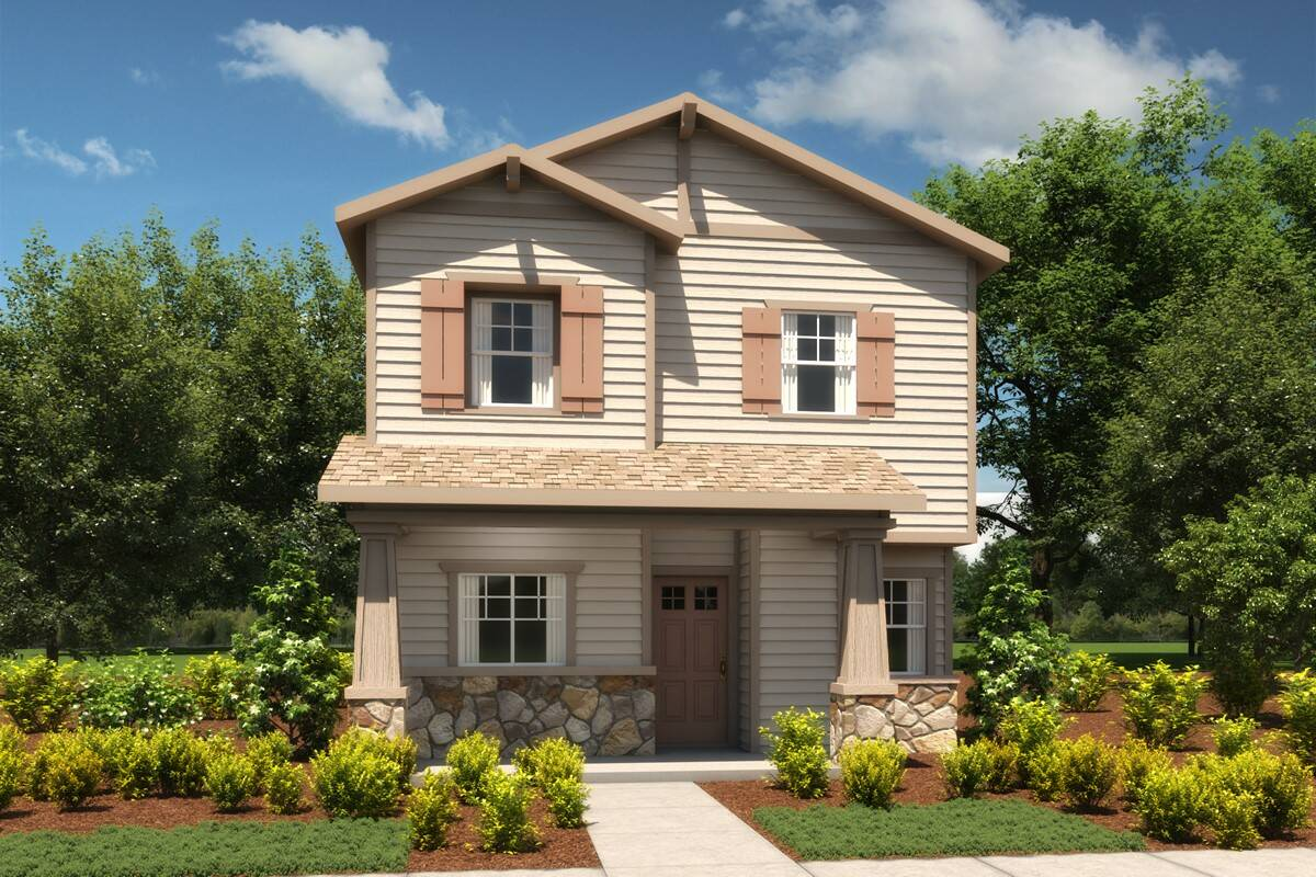 2225 tobago d craftsman all siding new homes aspire at stones throw-elev