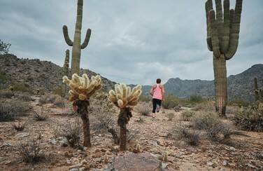 4 13998_Four Seasons Victory at Verrado_Hiking Trails 501 x 624