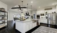 kitchen3_St Augustine 11703 IMG 12_1_1c